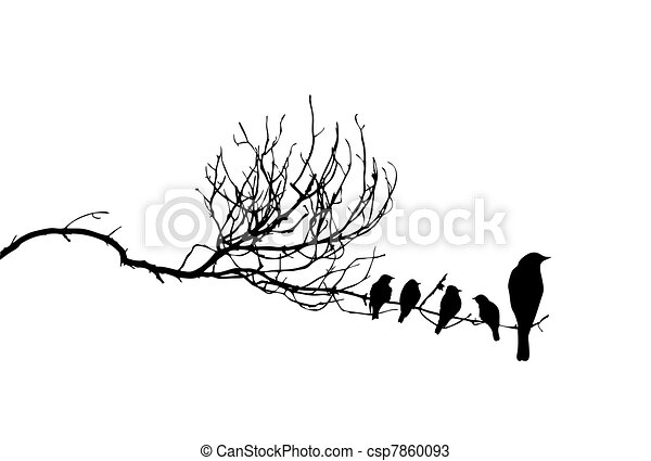 vector silhouette of the birds on branch - csp7860093