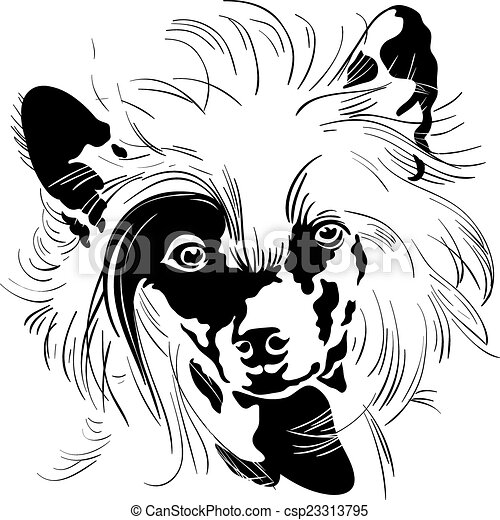 Vector sketch Chinese Crested dog hand drawing vector - csp23313795