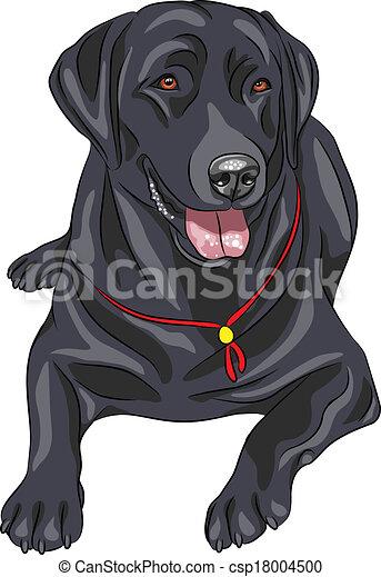 vector sketch dog breed labrador re smiling black gun dog vector rh canstockphoto com black lab face clip art black lab dog clipart
