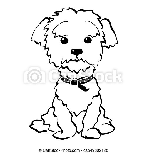 vector sketch funny maltese dog sitting sketch funny dog vector rh canstockphoto com maltese puppy clipart fire maltese clipart