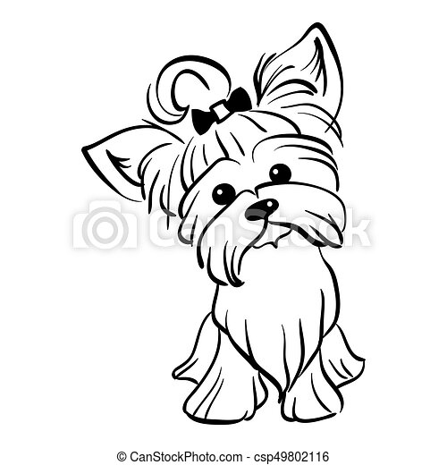 Vector sketch funny Yorkshire terrier dog sitting - csp49802116