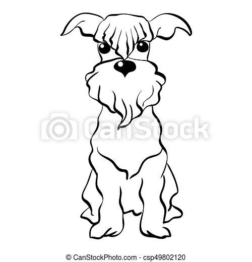 Vector sketch Miniature Schnauzer dog sitting - csp49802120