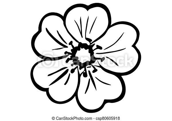 vector sketch of a wildflower plant - csp80605918