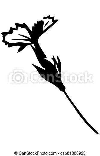vector sketch wild wild flower on a thin stalk - csp81888923
