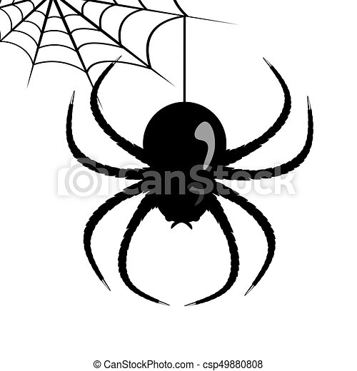 vector spider web and spider vector web and huge spider on a white rh canstockphoto com spider vector free download spider vector eps