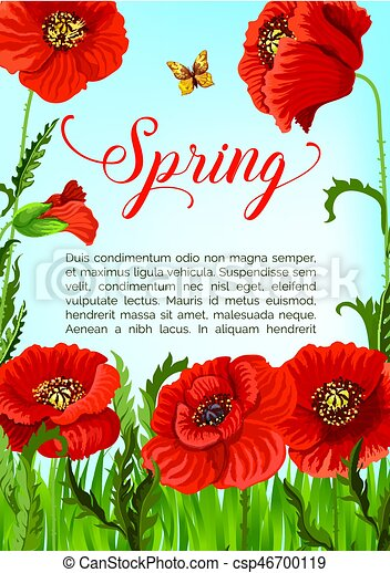 Vector spring time greeting card of poppy flowers spring holidays vector spring time greeting card of poppy flowers mightylinksfo