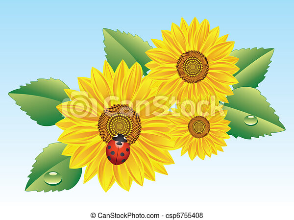 Sunflower Line Drawing : Vector sunflowers and ladybird search clip art