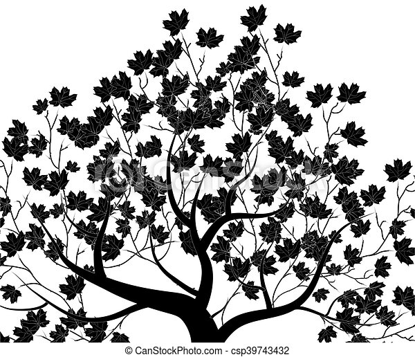 Vector tree; isolated on white - csp39743432