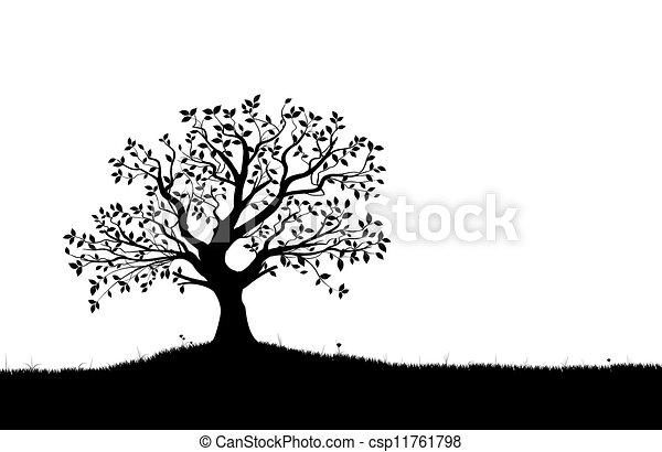 Vector Tree Silhouette, vectorial - csp11761798