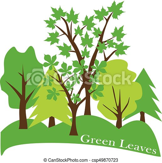 vector trees in the forest eco landscape vector illustration rh canstockphoto com vector trees in plan vector trees top view