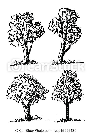 Vector trees with leaves - csp15995430