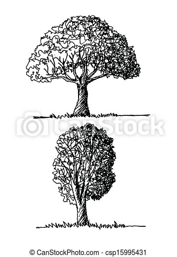 Vector trees with leaves - csp15995431