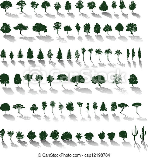 Vector trees with shadows - csp12198784