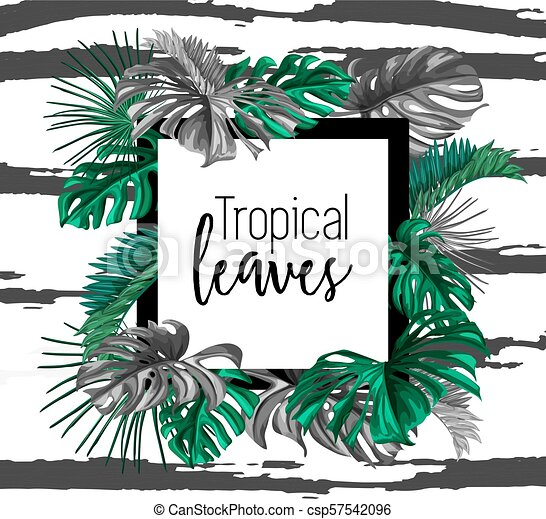 vector tropical exotic leaves summer banner vector tropical leaves