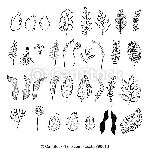 Vector Tropical Flowers And Leaves Vector Isolated Outline Illustration Of Tropical Exotic Flowers And Leaves Collection Canstock Square floral frame with watercolor flowers border and outlined leaves. https www canstockphoto com vector tropical flowers and leaves 65290810 html