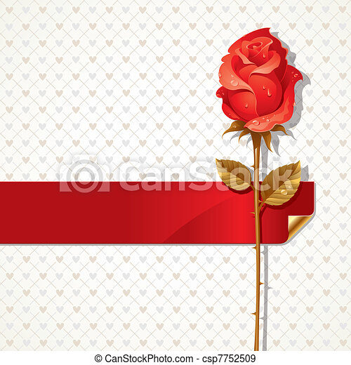 Vector Valentines illustration with Red rose and ribbon - csp7752509