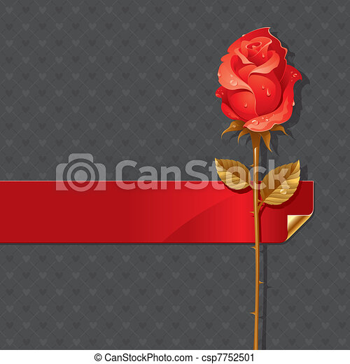 Vector Valentines illustration with Red rose and ribbon - csp7752501
