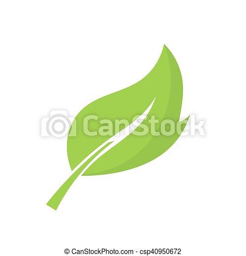 Hoja verde. Ilustración de vectores - csp40950672