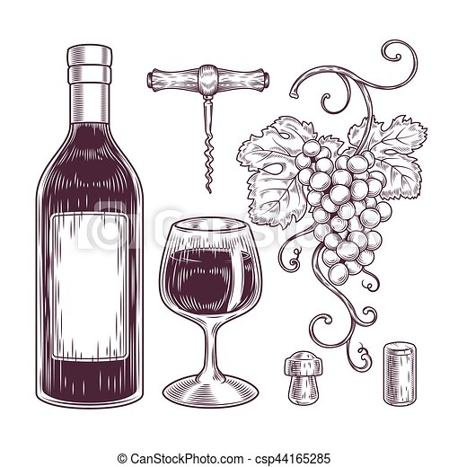 vector, vino, colección, iconos - csp44165285