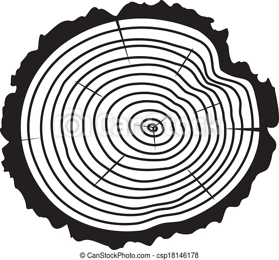 vector  wooden cut of a tree log  - csp18146178