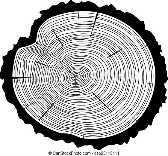 vector wooden cut  - csp25113111
