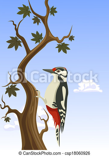 Vector woodpecker clinging to a tree trunk - csp18060926