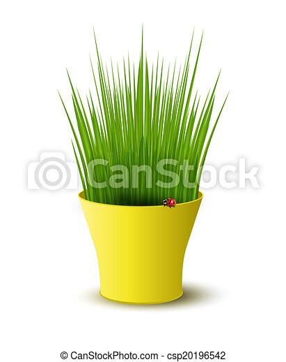 vector yellow pot with green grass - csp20196542