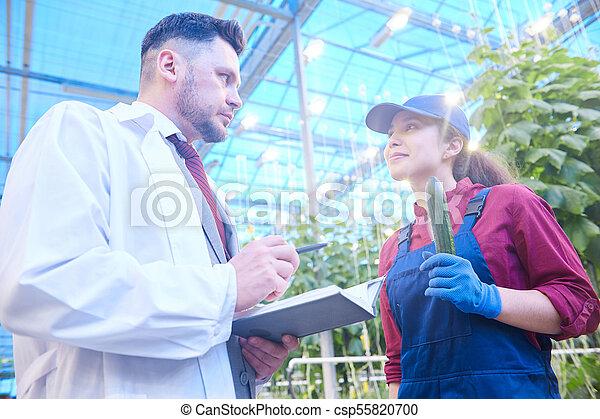 Vegetable Breeder Talking to Worker in Farm - csp55820700
