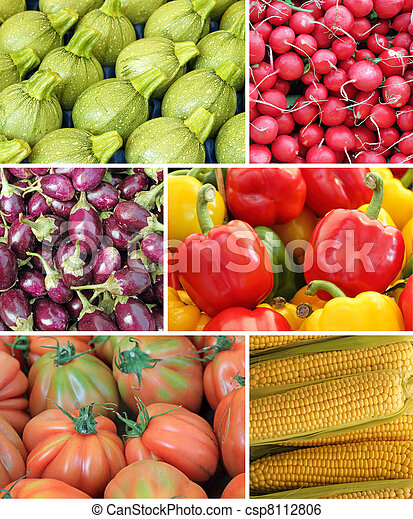 vegetable collage - csp8112806