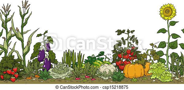vegetable garden bed on a white background vector illustration rh canstockphoto com Flower Garden Clip Art vegetable garden border clipart