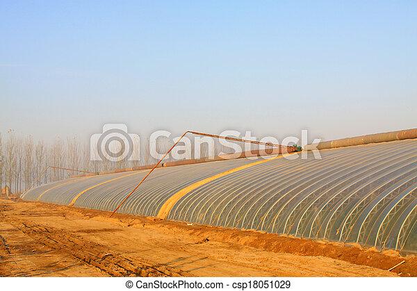 vegetable greenhouse - csp18051029