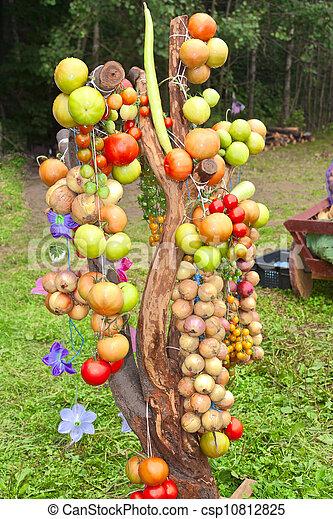 Vegetable harvest - csp10812825