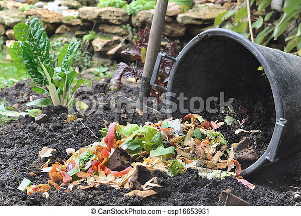 vegetable peelings for compost - csp16653931