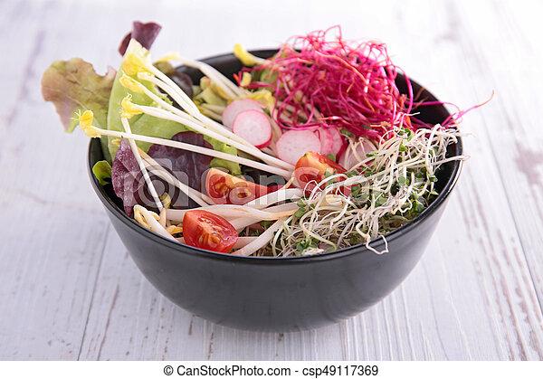 vegetable salad in bowl - csp49117369