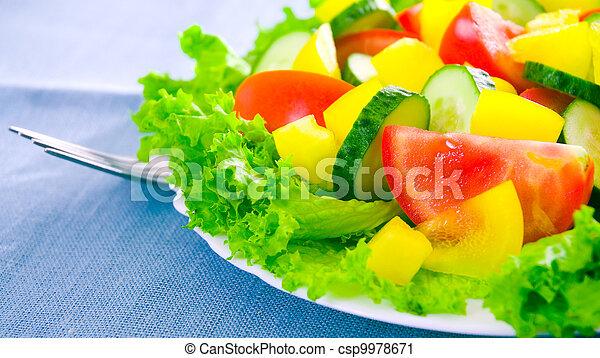 vegetable salad on plate - csp9978671