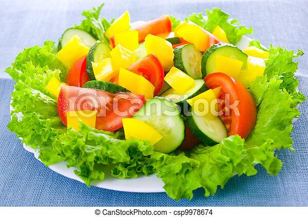 vegetable salad on plate - csp9978674