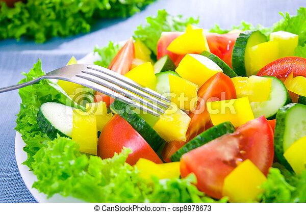 vegetable salad on plate - csp9978673