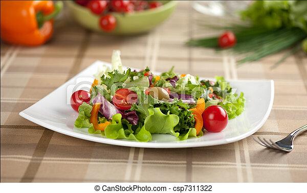 vegetable salad - csp7311322