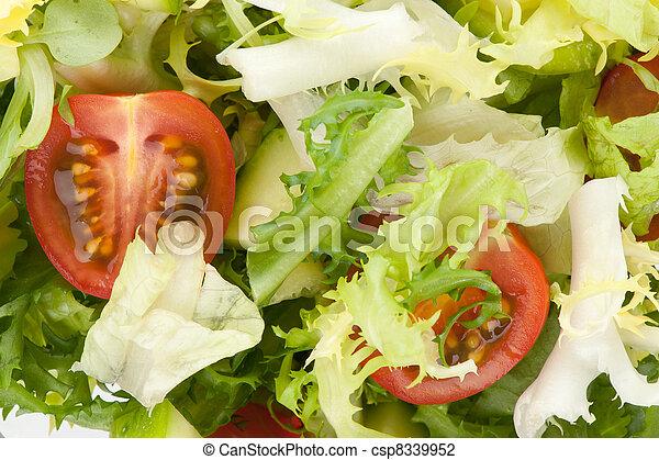vegetable salad - csp8339952