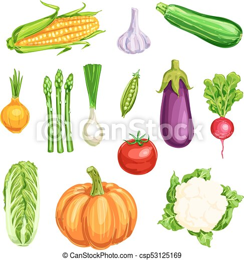 vegetable watercolor icon of organic farm veggies vegetable rh canstockphoto com Broccoli Clip Art Protein Clip Art