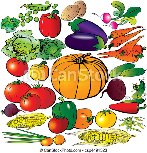 vegetables. - csp4491523