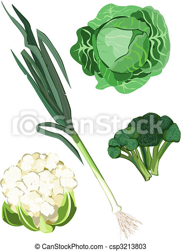 Vegetables - csp3213803