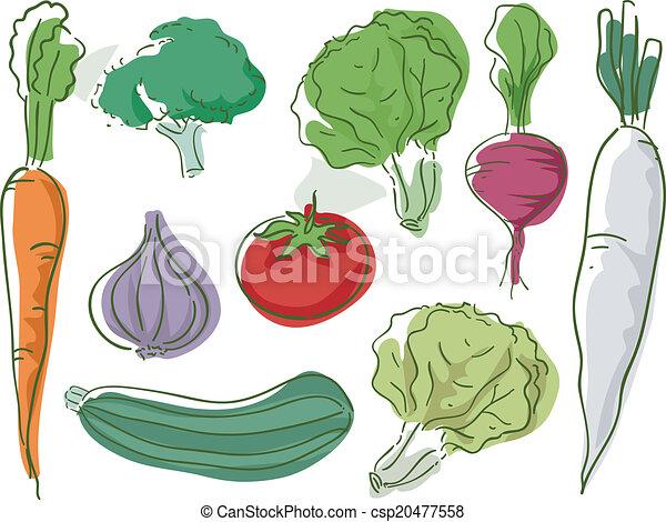 Vegetables Sketch - csp20477558