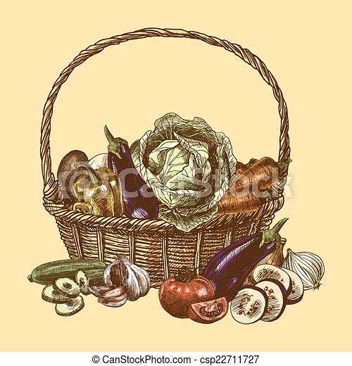 Vegetables sketch color - csp22711727