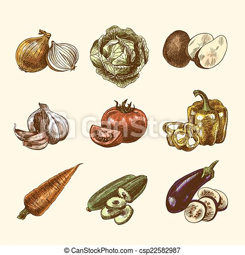 Vegetables sketch set color - csp22582987