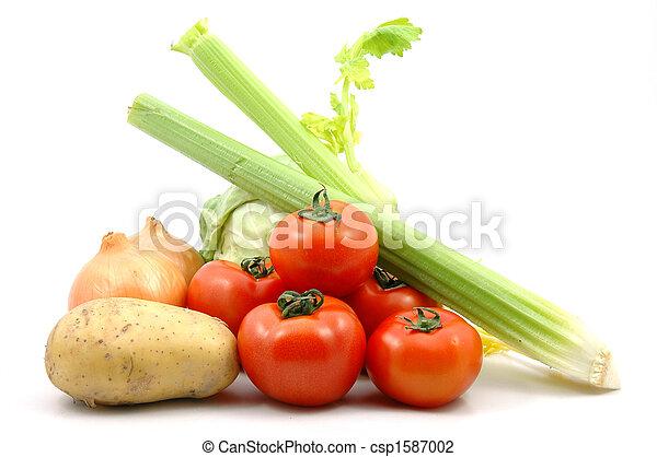 Colección vegetal - csp1587002