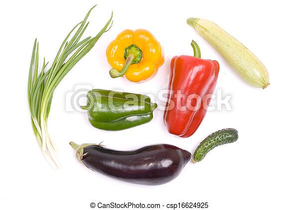 Colección vegetal - csp16624925