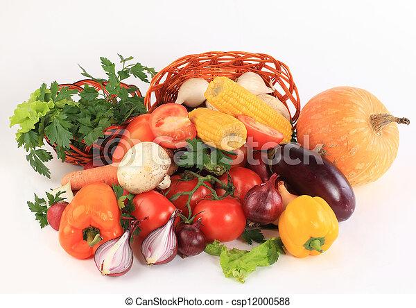 Un cuadro vegetal colorido - csp12000588