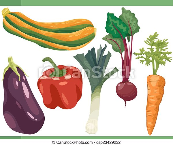 Los dibujos de vegetales son ilustraciones - csp23429232