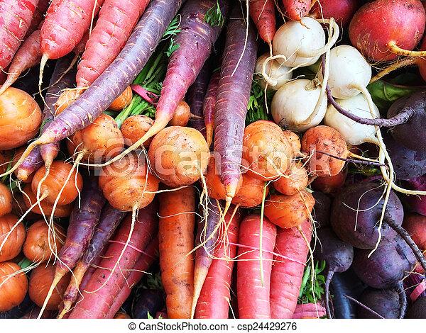 Verduras de raíz coloridas - csp24429276